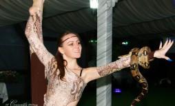 Шоу номер со змеей