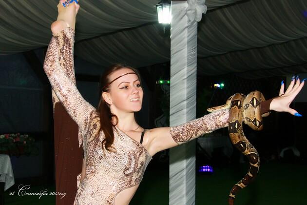 шоу со змеей